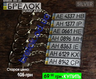 Silver 1  1024